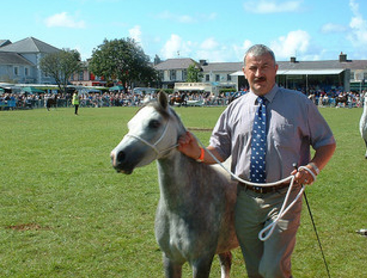 2015 Chairman - Gethin Williams, Hendre Stud, showing his Section A at the 2007 Festival.